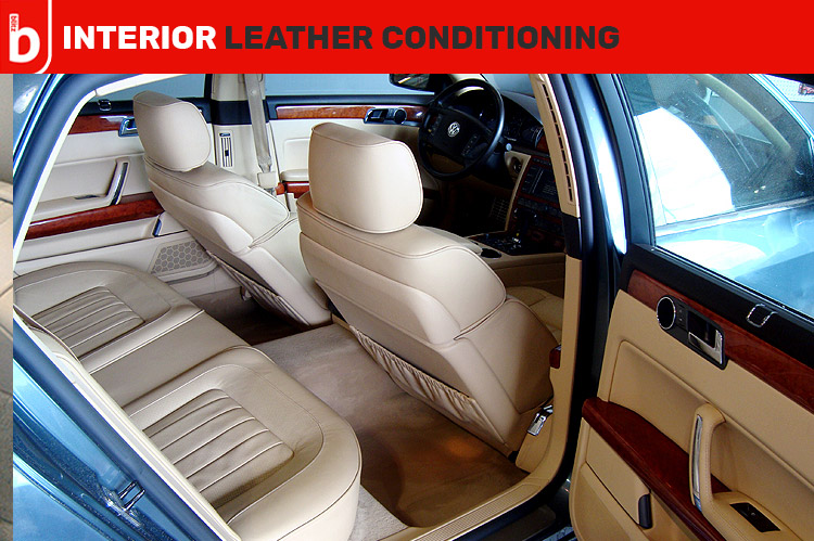 Leather Conditioning